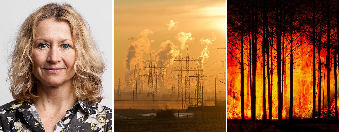 Sweden's climate is challenging new startups to fight climate change